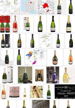 Champagne (aoc-aop)